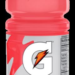 Gatorade Sports Drink Watermelon 591ML